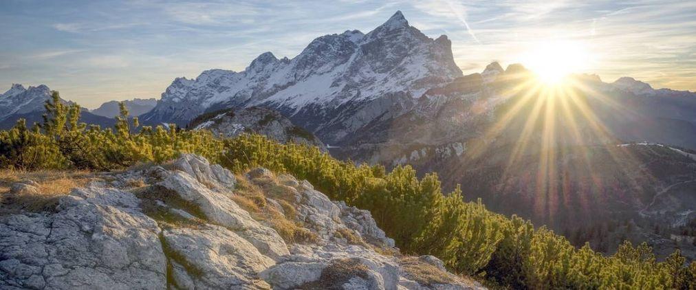 Naturbestattung in der Schweiz - Letzte Ruhe im Grünen