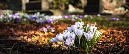 Beerdigung: Was ist machbar und was kostet es?