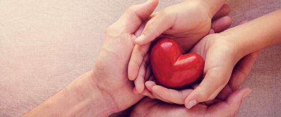 Organspende – das sollten Sie wissen